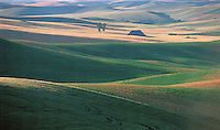 Wheat &amp; Pea Fields Palouse Region region Washington, Idaho Border with barn