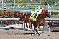 HALLANDALE BEACH, FL - FEBRUARY 04:  Favorable Outcome (KY) #4 with jockey Javier Castellano up, wins the Swale Stakes G2 at Gulfstream Park on February 04, 2017 in Hallandale Beach, Florida. (Photo by Liz Lamont/Eclipse Sportswire/Getty Images)