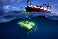 Robert Ballard (Bob Ballard) uses ROV's to search for ancient ship wrecks in the anoxic layer of the Black Sea.  His theory is that wood would be preserved in the toxic waters, and he was correct.