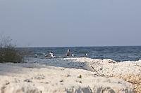 SEA_LOCATION_80261