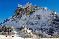 Alpine slopes  looking towards the Wetterhorn. Swiss Alps, Switzerland