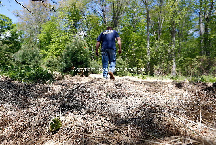 Wolcott, CT- 13 May 2015-051315CM02-   Wolcott resident, Brian Smail talks about his concerns regarding a walking trail which the Town of Wolcott is building around Scovill Reservoir, near his home in Wolcott on Wednesday. Smail believes there have violations made to the wetlands area, where the trail will go through.      Christopher Massa Republican-American