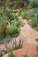 Penstemons, columbines, iris and iceplant are among the many blooming plants that embellish the flagstone path to the lower pond in Dan Johnson's backyard garden in Denver, Colorado