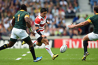 Ayumu Goromaru of Japan puts in a grubber kick. Rugby World Cup Pool B match between South Africa and Japan on September 19, 2015 at the Brighton Community Stadium in Brighton, England. Photo by: Patrick Khachfe / Onside Images
