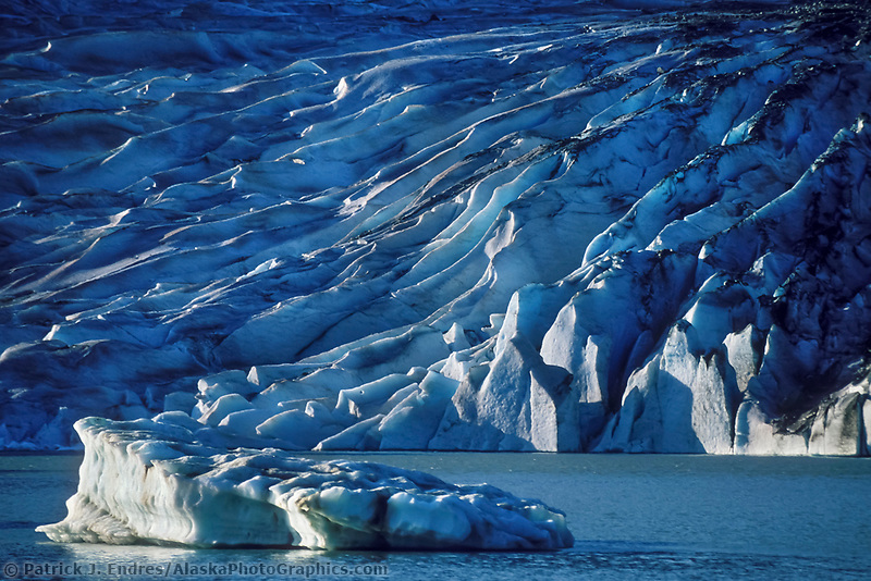 Mendenhall glacier terminus, Juneau, Alaska. The Mendenhall Glacier formed about 3,000 years ago. It originates on the western snowfields of the Taku Range at an elevation of 5,500 feet and flows down to 100 feet above sea level