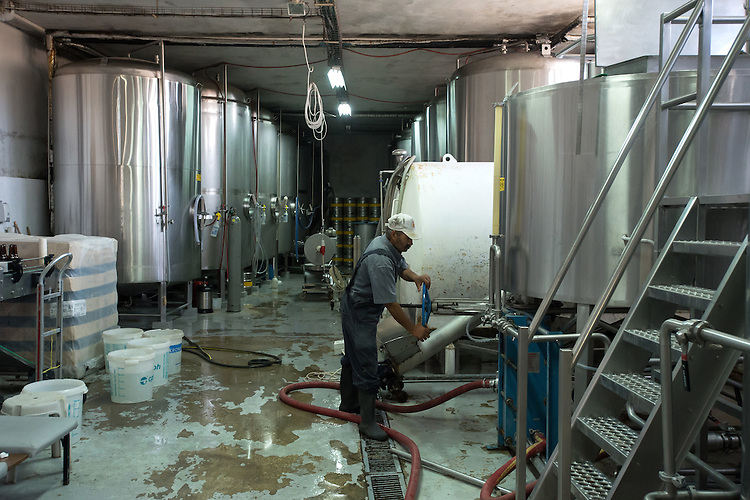 PALESTINE Taybeh, West Bank<br /> <br /> Taybeh Brewery Company:<br /> <br /> A worker at the brewery.