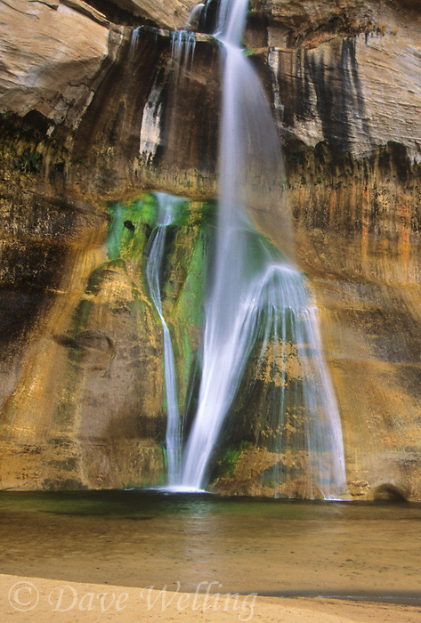 792800216 lower calf creek falls flows down an algae covered rock face in a small alcove in escalante grand staircase national monument in south central utah