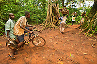 Men with bird shot in forest and women with firewood gathered in protected forest, Boabeng Monkey Sanctuary, Ghana