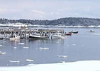 Winter Docks, Stonington, Maine