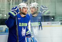 20150430: CZE, Ice Hockey - 2015 IIHF Ice Hockey World Championship, Team Slovenia at training