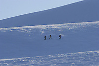 Tourists skiing in the Arctic, near the main settlement Longyearbyen. The Arctic island of Spitsbergen is the largest of islands in the group that makes up Svalbard. The islands are close to the North Pole and about 60% of the land mass is covered by glaciers. The main activities are mining, tourism and Arctic research. © Fredrik Naumann