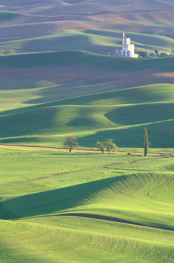 Whitman Grainery and rolling hills of wheat fields, Steptoe Butte State Park, Palouse area, Washington.