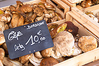 On a street market. Cepes porcini mushrooms. Bordeaux city, Aquitaine, Gironde, France