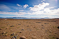Thingvellir (or Þingvellir in Icelandic) National Park is park of the popular Golden Circle tourist trail in Iceland.
