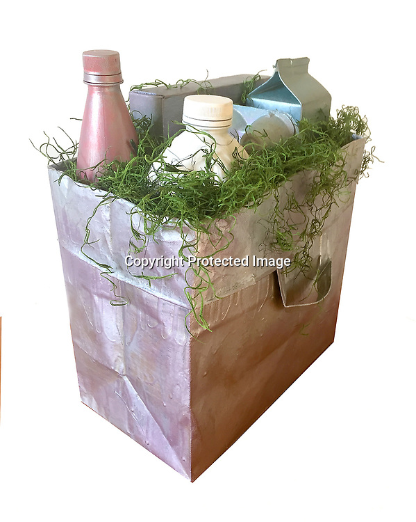 A paper grocery and/or sandwich bags transformed into an artful planters, desk storage bin, office garbage can piece or a beautiful conversional piece for your home or office.  Your order will be unique as they are not mass produced from China but made to order (and signed) from a famous artist located in the Bay Area of San Francisco.  The artwork is covered in hard clear resin and painted with several coats of metallic paint giving it that industrial appearance of medal. There are no two &quot;art bags&quot; alike your order will take about two-three weeks for delivery as each our piece will be done to order by the artist.  All the artwork will be signed.<br /> <br /> Grocery Bags - $85.00<br /> Sandwich - $55.00