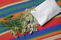 Duftkissen, Traumkissen, Kissen wird mit Mädesüß und Kamille, Kamilleblüten gefüllt, Duftpflanze, Duftpflanzen