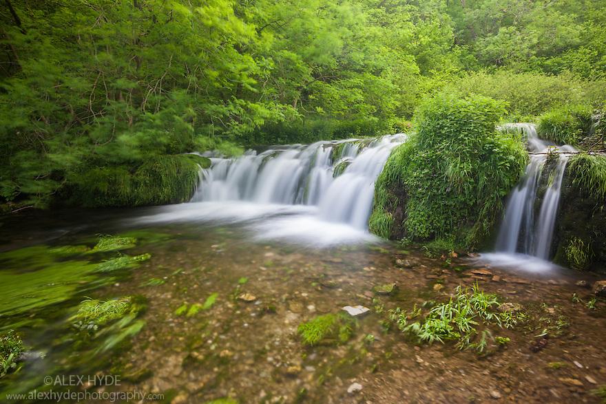 The River Lathkill, Lathkill Dale NNR, Peak District National Park, UK. June.