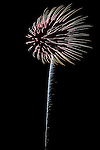 Fireworks at the Alaska State Fair in the wind created what appeared to be a bloomed-out dandelion flower.