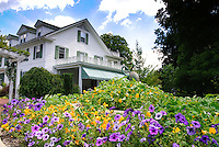 Traditional white House in colonial style, annual flowers of nasturtiums Tropaeoleum, petunias, blue skies, clouds, sunny summer day, bird ornament statutes, trellis