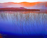 Lough Beagh at dawn, Glenveagh National Park, Republic of Ireland, County Donegal, Moor and heath wilderness, September