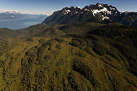 Estuaries are shrouded in morning fog in the are around and including Lion's Head.  There is a proposed road to the Kensington gold  mine which is drawing diverse opinions.  Morning aerials of Tongass National Forest and estuaries flowing into the Lynn Canal.
