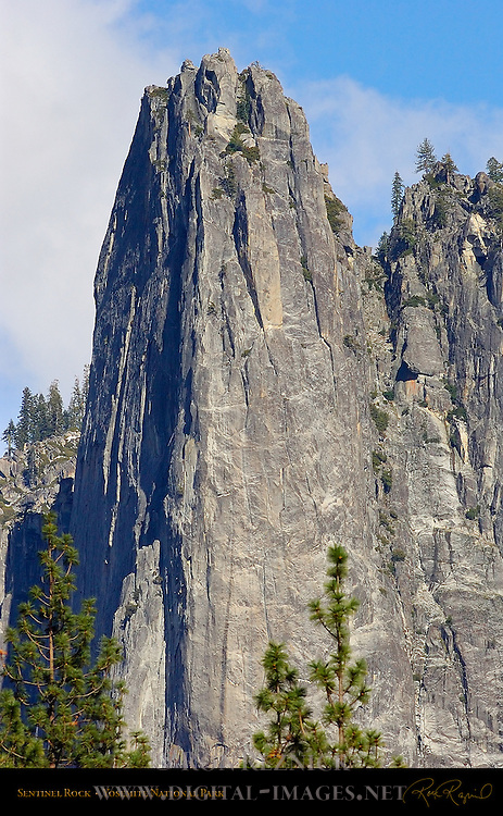 West Face of Sentinel Rock from El Capitan Meadow, Yosemite National Park