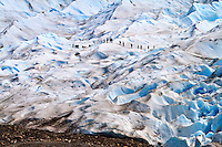 A group trekking on the blue ice of Glacier Perito Moreno in Parque Nacional los Glaciares, Argentina.