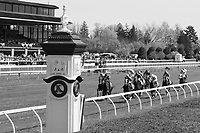 LEXINGTON, KY - April 09, 2017, Start of the 4th race at Keeneland Race Course.  Lexington, Kentucky. (Photo by Candice Chavez/Eclipse Sportswire/Getty Images)