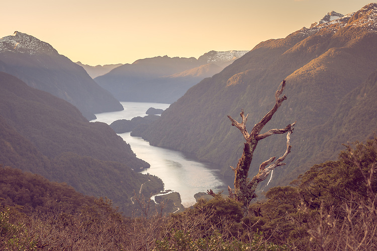 A beautiful soft sunset from the top of Wilmot Pass overlooking Doubtful Sound in Fiordland, South Island, New Zealand