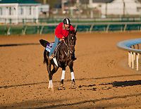 Take Charge Indy, trained by Patrick Byrne and to be ridden by James Graham exercises in preparation for the 2011 Breeders' Cup at Churchill Downs on November 1, 2011.