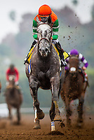 ARCADIA, CA - FEBRUARY 06: Unique Bella #4, ridden by Mike Smith wins the Las Vigenes Stakes at Santa Anita Park on February 6, 2017 in Arcadia, California. (Photo by: Alex Evers/Eclipse Sportswire/Getty Images)