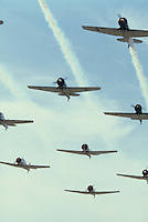 Photo of North American AT-6 Fighter Trainer WW2 airplanes in Formation Flight.