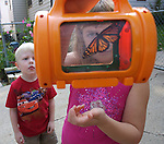 "Natalie Tapscott admires the Monarch butterfly that she caught at her home in Clive, Iowa, in September, 2007.   Also looking on is 4-year-old Hunter Norris.  Natalie is the daughter of Matt and Denise Tapscott , who run a home day care business in Clive, Iowa.  Six-year-old Natalie intermingles with the other children when she has a day off from school.  The Tapscott's  home business, called ""Almost Home"" is a model for in-home child care.  Their goal is to provide a home away from home for children during their critical developmental years."