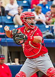 7 March 2015: St. Louis Cardinals catcher Ed Easley in Spring Training action against the Washington Nationals at Space Coast Stadium in Viera, Florida. The Cardinals fell to the Nationals 6-5 in Grapefruit League play. Mandatory Credit: Ed Wolfstein Photo *** RAW (NEF) Image File Available ***