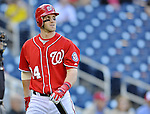19 September 2012: Washington Nationals rookie outfielder Bryce Harper walks back to the dugout after a plate appearance against the Los Angeles Dodgers at Nationals Park in Washington, DC. The Nationals defeated the Dodgers 3-1 in the first game of their double-header. Mandatory Credit: Ed Wolfstein Photo