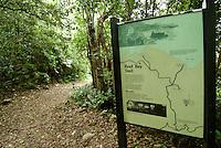 Sings along the Reef Bay Trail.Virgin Islands National Park.St John, US Virgin Islands