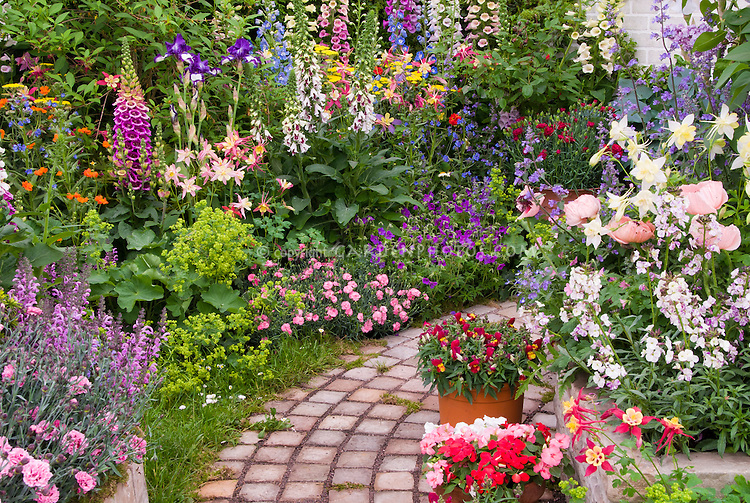 Stone garden path with lush flower garden plant flower for Tall trees for small gardens