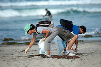 Saturday, September 20 2008.  Pacific Beach, San Diego, CA, USA:  Linh Bowman and Andrew Phan search for trash on Pacific Beach with members of Scout Troop 295 from Clairmont.  Volunteers in the annual Coastal Cleanup found little to clean up beyond cigarette butts on San Diego's Alcohol free beaches.