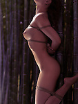 Beautiful naked Japanese woman tied with Shibari bondage ropes to a bamboo in a forest