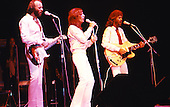 BEE GEES (LIVE 1979)