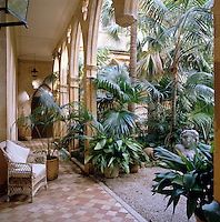 A colonnaded terrace surrounds this courtyard garden which is filled with palm trees