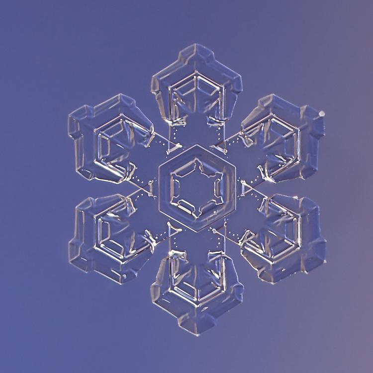 Snowflake Alpha Hydri - Stellar Plate Snowflake