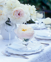 Detail of a place setting with a white peony