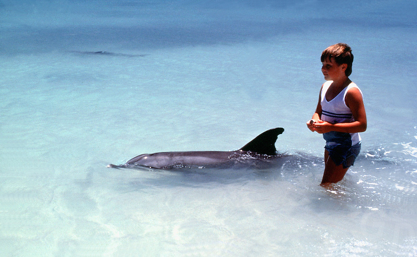 BOY AND DOLPHIN