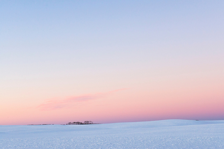 Farmland, winter, snow, Manitoba, Riding Mountain, Erickson area