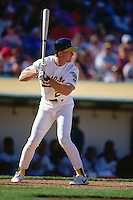 OAKLAND, CA - Mark McGwire of the Oakland Athletics in action during a game at the Oakland Coliseum in Oakland, California in 1991. Photo by Brad Mangin