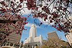 A view of iconic Los Angeles City Hall building in spring.