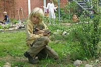 Schulgarten, Anlage eines Schmetterlingsgarten, Garten der Grundschule Nusse wird als Projektarbeit von einer 1. Klasse gestaltet, Junge sammelt Feldsteine für die Beeteinfassung auf, Gartenarbeit
