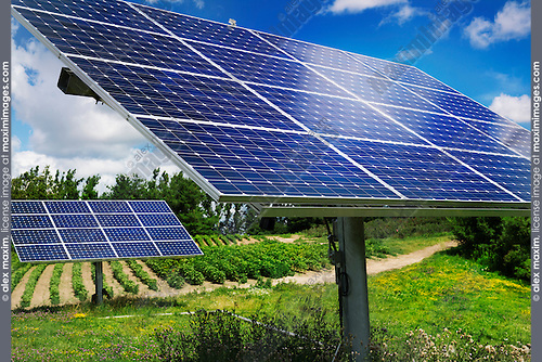 Solar panels with sunlight trackers on a farm in Milton, Ontario, Canada.