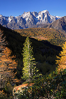 I took this in a evening of mid October, when fall colours were just about the peak, from atop the ridge that encircles the lake of Arpy (which lies behind my shoulders here), a natural balcony looking down to the north-western end of Valle d'Aosta, with the majestic Monte Bianco massif in the background.
